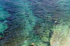 Sea water surface background. - Nature