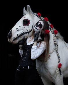 Winning at Halloween! Horse Halloween Ideas, Horse Halloween Costumes, Cute Horses, Horse Love, Beautiful Horses, Black Girl Halloween Costume, Photo Halloween, Belle Halloween, Happy Halloween