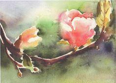 Magnolia Study by Beth Spiegel