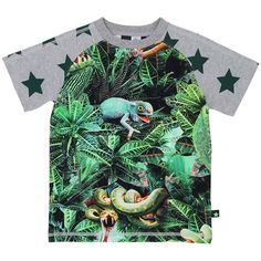 Short sleeved T-shirt with round neck and molo's unique, digital all over print 'Jungle' and short sleeves with star prints. Jungle