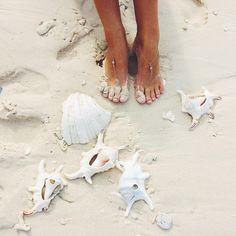 .Live in the sun, love on the beach, and prosper in the ocean. Follow @Eigthy6sunnies #Eighty6Sunnies http://www.eighty6sunnies.com