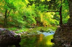 Stream Water - Bing images