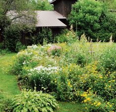 Six tips on how to create a wild, natural garden - Chatelaine