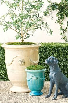 Urn-shaped and adorned with garlands and medallions, these hand-glazed ceramic planters are a staple in French gardens. With the special nature of the reactive glaze, the Azure finish displays a range of variation in tone from soft aqua and turquoise to deep azure. Each planter will appear inherently unique. Our Anduze Indoor/Outdoor Planters can stand alone as pottery pieces or complement your chosen plantings. Trough Planters, Outdoor Planters, Ceramic Planters, Indoor Outdoor, Pool Mat, Aqua, Turquoise, Hand Molding, Large Plants