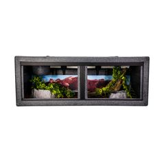 The model 422 is now available in the new Black Granite color.  Same great cage... beautiful new color! Reptile Cage, Reptile Enclosure, Diy Aquarium, Granite Colors, Animal Room, Black Granite, Things To Buy, Reptiles, Dachshund