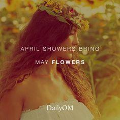 #DailyOM #quotes #mayflowers
