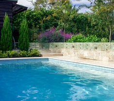 Pyrus 39 capital 39 pear trees underplanted with gardenia for Pool design northern beaches