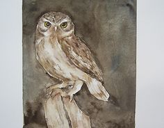 """Check out new work on my @Behance portfolio: """"Owl"""" http://be.net/gallery/54355931/Owl"""