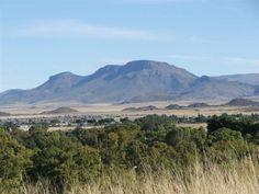 Renosterberg, naby Middelburg, Karoo/Oos-Kaap - waar ek grootgeword het :)