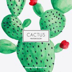 Watercolor cactus design. Alejandra Jerez