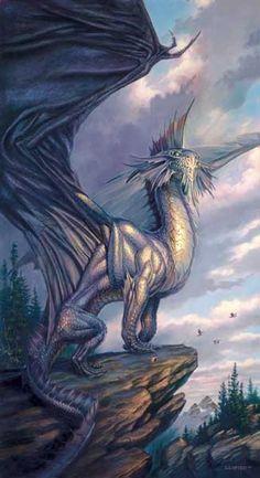 photo dragons19.jpg