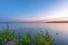 #hungary#travel #summer #ikozosseg #mik #instadaily #photooftheday #clouds #rural #nature #balaton #lake #sunset #shore #turista #magyarorszag #balatonakali #ducks