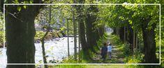 Günstige Sommeraktivitäten mit Kindern | Arche Zürich Plants, Counseling Psychology, Hiking Trails, Weather, Children, Planters, Plant, Planting