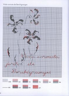 Gallery.ru / Фото #1 - MTSA---Pensees-et-violettes - Chepi