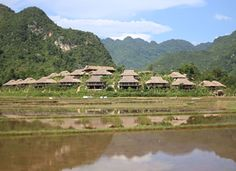 Nested in the Maichau valley, Maichau eco lodge is the best way to enjoy the nature and culture of this valley.