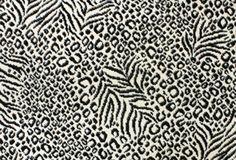 Stanton Carpet: Exotic Black and White