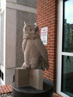 Temple University Owl, USA