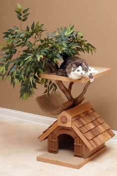 Now this is something the kitties will like!!  Sappling Lifelike Small Cat Tree House