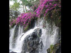 Hawaiian waterfall : Scenic Hawaii : TravelChannel.com