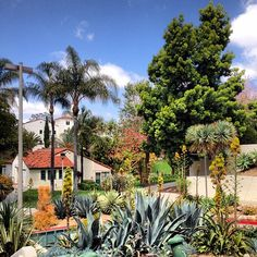 I miss you, SDSU! Scripps Cottage-one of my favorite spots! Gonna Miss You, San Diego State University, Make It Work, Aztec, New Homes, Scene, College, Spaces, Mansions