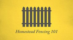 If your planning on raising animals or growing crops on your farm or homestead… YOU NEED FENCING! But what kind of fencing? That depends a lot on what you will grow! Starting A Farm, Starting A Garden, Building Raised Beds, Homestead Farm, Pig Farming, Backyard Chickens, Fencing, Gardening Tips, Homesteading