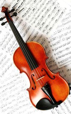 Entre os dias 4 e 12, acontece a Semana de Música 2013, promovida pela Universidade Federal do Rio Grande do Norte (UFRN), com entrada Catraca Livre.