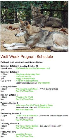 Wolf Week at Woodlands Nature Station in Land Between The Lakes. Programs Daily during Fall Break, Oct 3-12, 2015