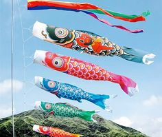 Traditionally, the set would contain a black koinobori representing the father, followed by a smaller, red koinobori representing his eldest son. If more boys were in the household, an additional blue, green and then, depending on the region, either purple or orange koinobori were added.