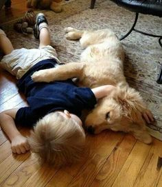 Best Friends  --  Nap where you fall.