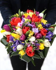 Impresionează pe cineva drag cu un cadou neaşteptat: un buchet absolut superb, în cele mai vesele culori. 33 lalele, 14 frezii şi 4 irişi într-o simfonie de culori. Comandă buchetul online şi trimite-l persoanei căreia vrei să-i aduci zâmbetul pe buze. Florile binedispun pe oricine, cu atat mai mult dacă vin din partea cuiva drag. Gândeşte-te la cei cărora nu le-ai creat de mult o bucurie şi apelează la serviciul nostru de livrare flori la domiciliu. E prea simplu, încât să nu profiţi! Magnolia, Iris, Floral Wreath, Wreaths, Flowers, Decor, Board, Floral Crown, Decoration