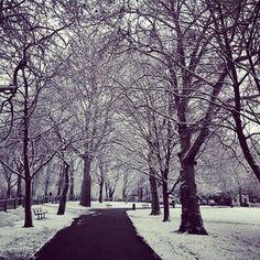 I loved the walk home through Highbury Fields especially when it snowed.