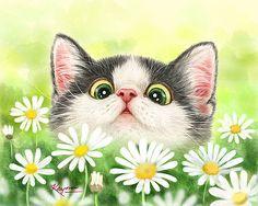 Daisy Garden by Kayomi Harai