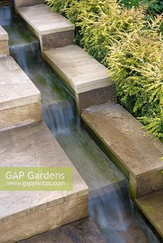 Water running down stepped rill with clipped hedge of Lonicera nitida 'Baggesen'. - Water running down stepped rill with clipped hedge of Lonicera nitida 'Baggesen's Gold' - Modern Water Feature, Outdoor Water Features, Backyard Water Feature, Water Features In The Garden, Garden Features, Back Gardens, Outdoor Gardens, Garden Fountains, Garden Landscape Design