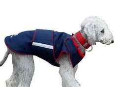 CUSTOM MADE SOFTSHELL DOG COAT WITH UNDERBELLY PROTECTION  This coat is appropriate for your dog even if she/he is very large, well muscled or has an unusual body type. The coat has two layers: • softshell outer • fleece lining Softshell is a sportwear fabric that can protect against wind and water, and it is breathable. This fabric is very durable, so it is highly recommended for highly muscular dogs.  Other features  • underbelly covering • it fastens at the back and at the shoulders w...