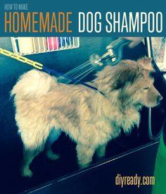 How to Make Homemade Dog Shampoo | Instructions For Making DIY Pet Safe Dog Shampoo By DIY Ready. http://diyready.com/how-to-make-homemade-dog-shampoo/