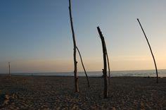 viareggio's beach