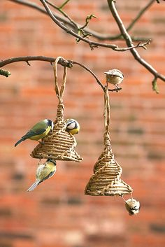 Fat/ suet bird feeder project- corn dolly style - As featured in book: Willow Craft 10 Bird Feeder Projects