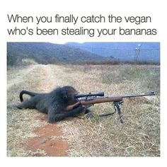 As U know memes make smile on our face and Due to this we collected daily funny memes Daily and today again we collected 25 most funny hilarious memes of the Day. I Hope U like these memes and Enjoy With Your Friends This Day. Really Funny Memes, Stupid Funny Memes, Funny Relatable Memes, Funny Tweets, Haha Funny, Hilarious Jokes, Fun Funny, Animal Jokes, Funny Animal Memes