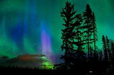 'Friday Night Lights' by peaceofthenorth British Columbia Flag, Langley British Columbia, Victoria British Columbia, Victoria Canada, Vancouver Wallpaper, West Coast Tattoo, Canada Travel, Northern Lights, Aurora Borealis