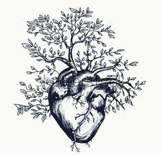 Anatomical human heart from which the tree grows heart nature Anatomisches menschliches Herz, aus dem der Stock-Vektorgrafik (Lizenzfrei) 424227829 Natur Tattoos, Kunst Tattoos, Human Heart Tattoo, Human Heart Drawing, Tree Heart Tattoo, Anatomical Heart Drawing, Anatomical Heart Tattoos, Wild Heart Tattoo, Bleeding Heart Tattoo