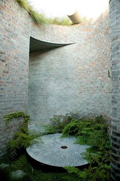 Urban Garden Design franchesca watson, studioMAS architects, and heimo schulzer gardens / 17 glen residence, higgovale cape town Outdoor Rooms, Outdoor Living, Outdoor Showers, Outdoor Kitchens, Small Gardens, Outdoor Gardens, Landscape Architecture, Landscape Design, Urban Nature