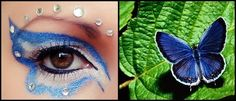 blue butterfly inspired eye makeup