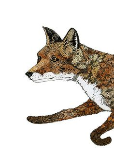 Fox Print Running Fox Pen and Ink  by ChasingtheCrayon on Etsy, £13.00