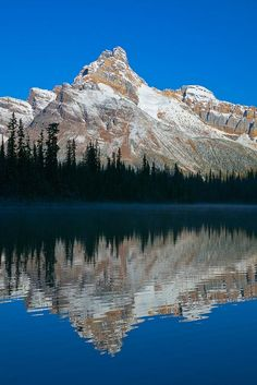 Cathedral Mountain Reflecting in Lake O'Hara, Yoho National Park, British…