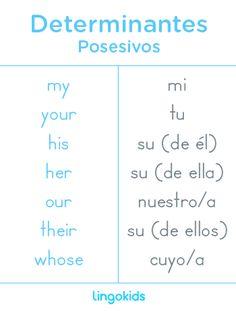 Posesivos - Determinantes en inglés Spanish Language Learning, English Vocabulary Words, English Phrases, Learn English Words, Teaching Spanish, Teaching English, English Writing Skills, English Lessons, Spanish Words For Beginners