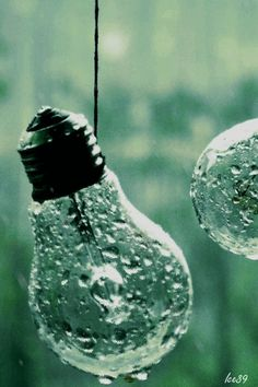Light bulbs in rain