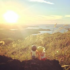 Nothing beats a sunrise with love!  #sunrise #hiking #travel #backpack #bluelagoon #island #yasawas #fiji #playmobiltravel #playmobillove #playmobil #instaplaymo #toystagram #travelbuddy by backpacker_bill