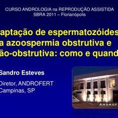 Captação de espermatozóidesna azoospermia obstrutiva e não-obstrutiva: como e quando CURSO ANDROLOGIA na REPRODUÇÃO ASSISTIDA SBRA 2011 – Florianópolis Sand. http://slidehot.com/resources/captacao-de-espermatozoides-na-azoospermia-como-e-quando.23999/