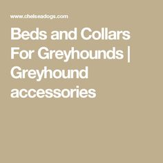 Beds and Collars For Greyhounds | Greyhound accessories