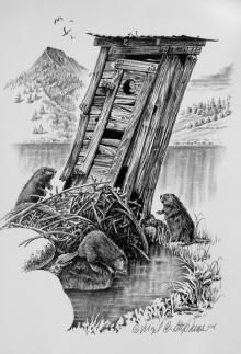 Outhouse art, Beaver art, Powder Room, print of a bunch of beavers working with the outhouse on their dam, wildlife art Pencil Shading, Pencil Art, Pencil Drawings, My Drawings, Graphisches Design, Pencil Drawing Tutorials, Wood Burning Art, Westerns, Wildlife Art
